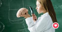 Hvordan fungerer hjernen