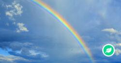 Hvordan opstår en regnbue?