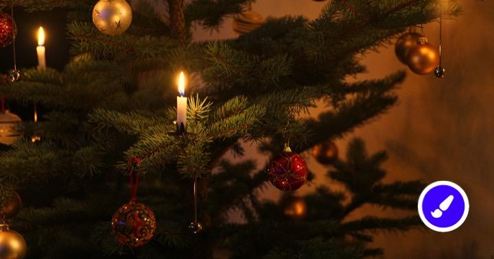 Hvorfor bruger man juletræet til jul? Lær om juletræets historie